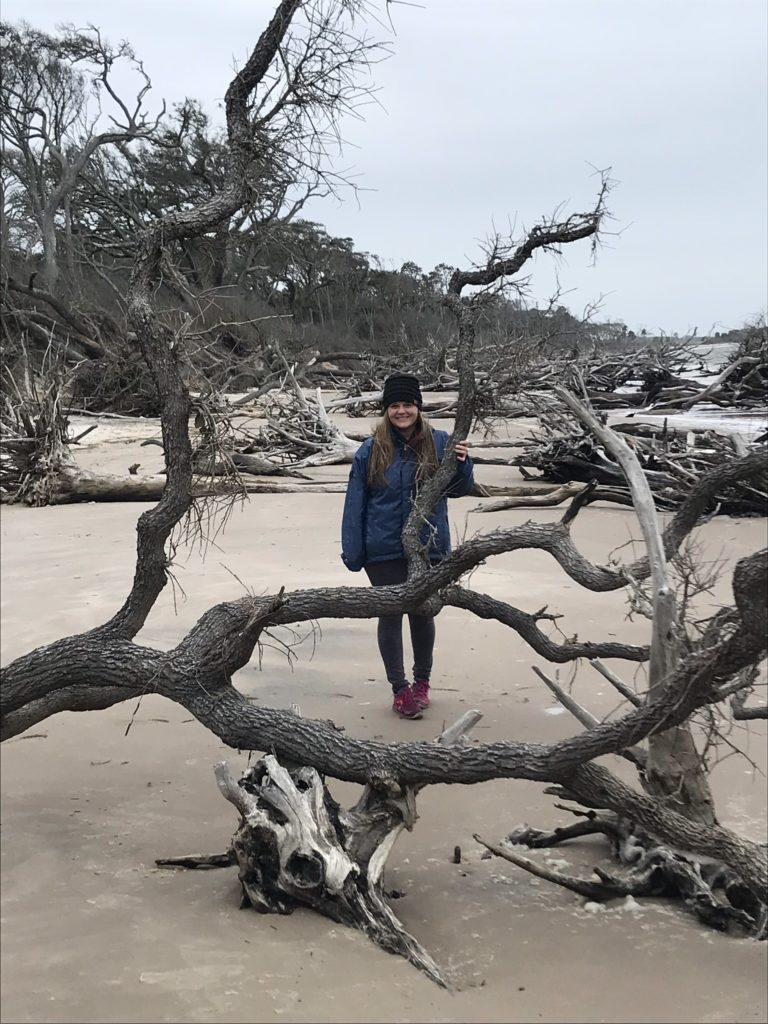 adventuring on a driftwood beach in Florida